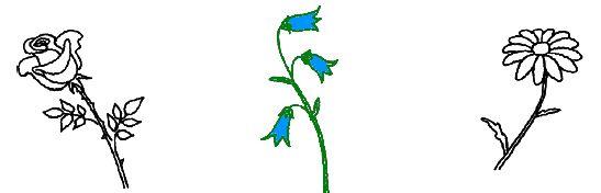 4. Реши, какой из этих цветков называется по-английски bluebell. Подумай, из каких частей состоит это слово. Раскрась этот цветок.