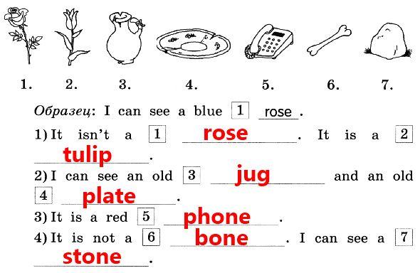 2. Впиши в предложения названия предметов, изображённых на рисунках.