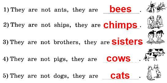 3. Впиши в эти предложения слова вместо картинок.
