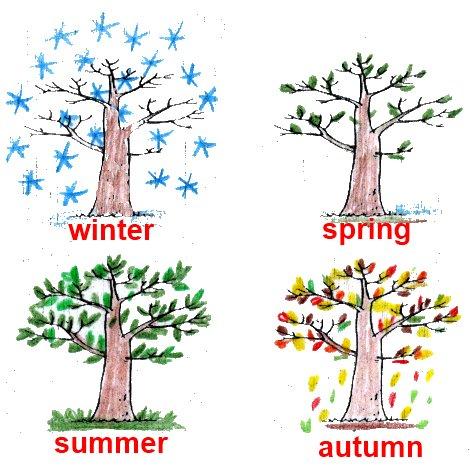 Как выглядит это дерево в разное время года? Дорисуй картинки, раскрась их и сделай подписи.